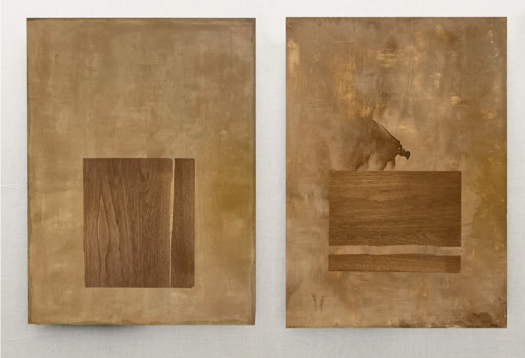 Diptych of organic brown acrylic paintings