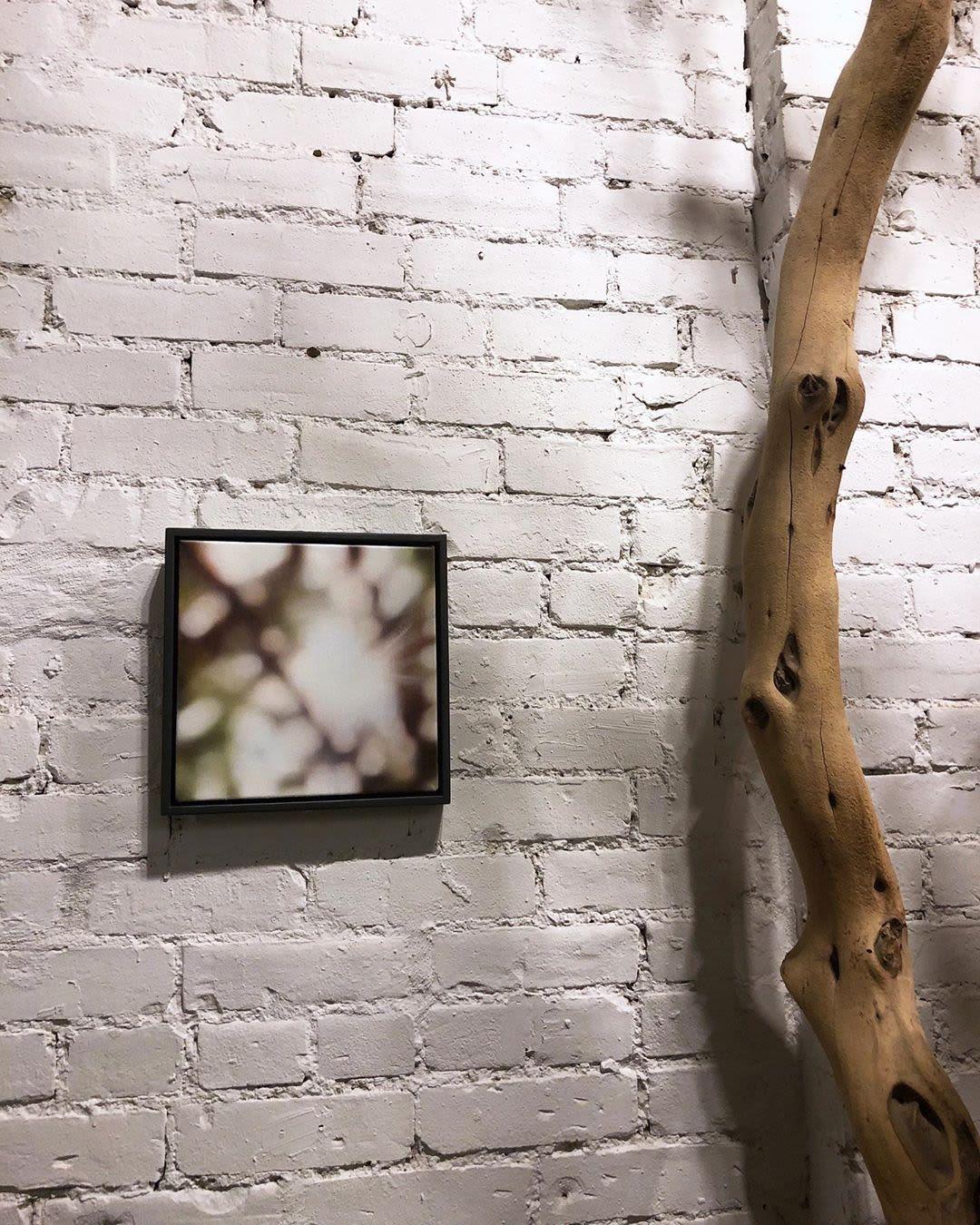 Paintings by Laura Wood seen at Umari Soul - Enough is Plenty, Toronto - Artwork