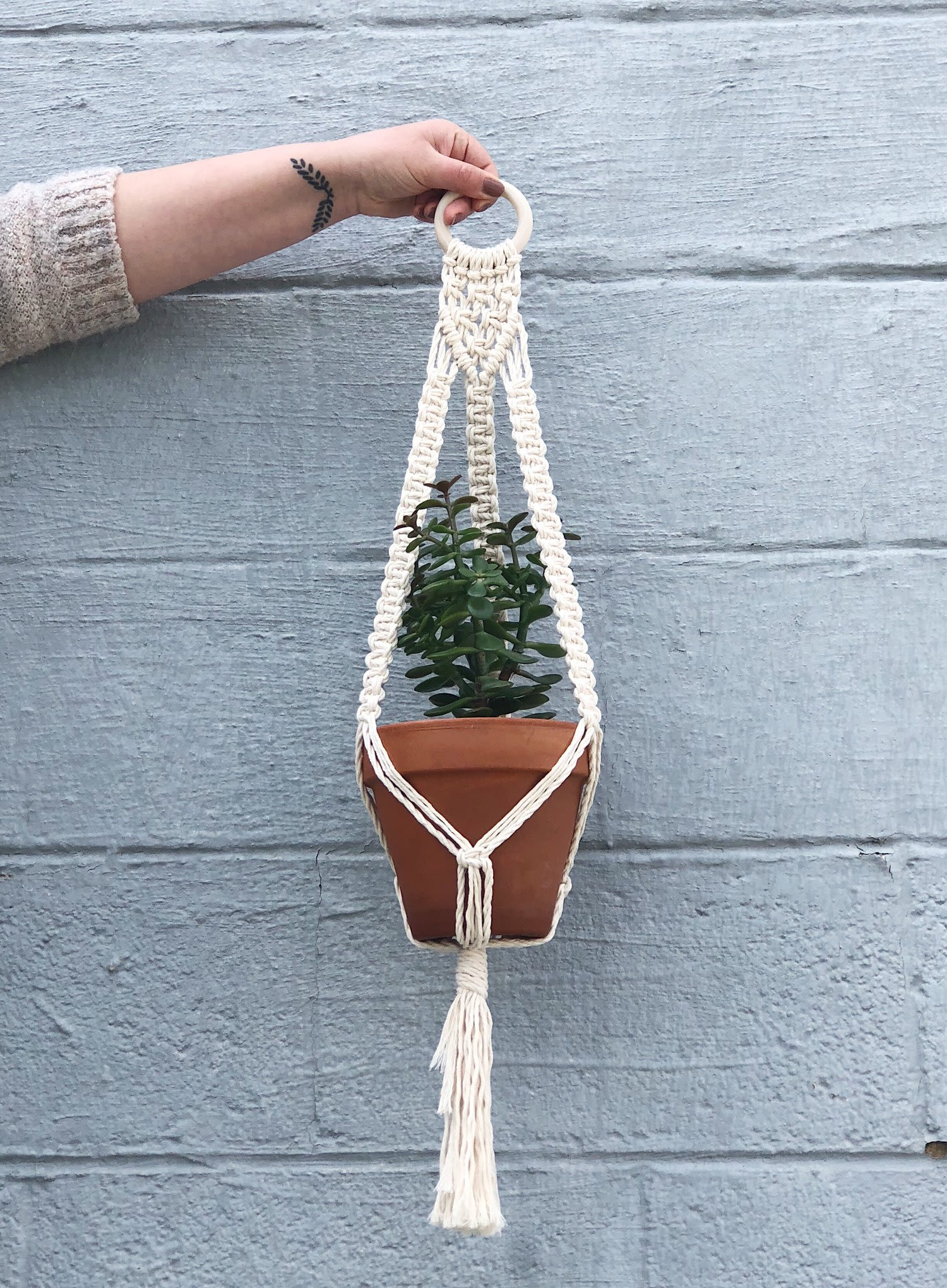 Macrame woven plant hanger with potted plant