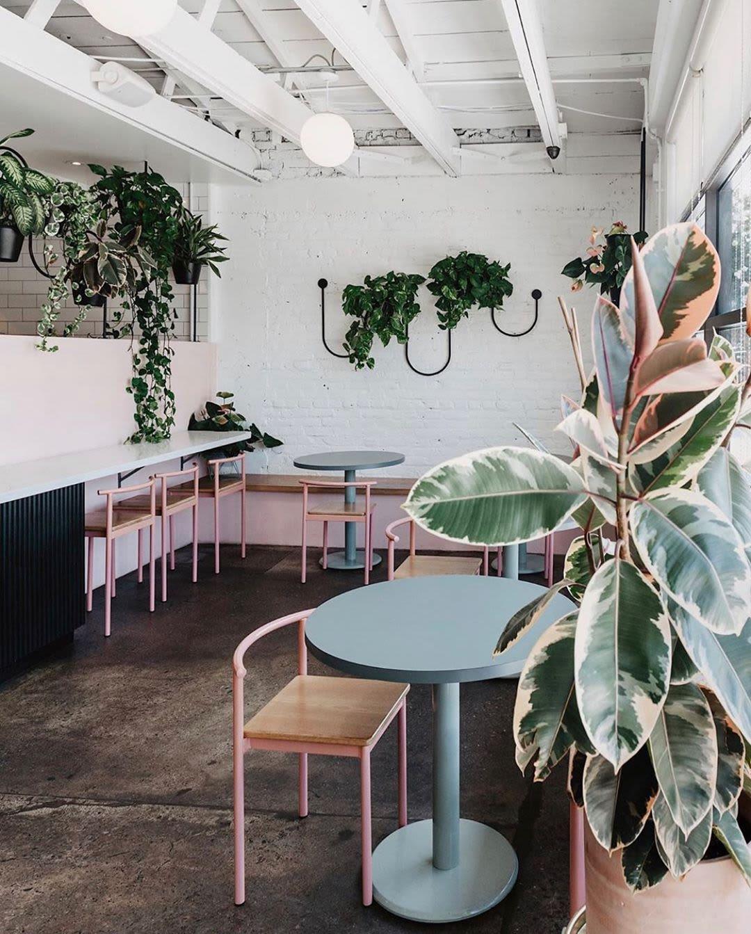 Unique line wall plant mount