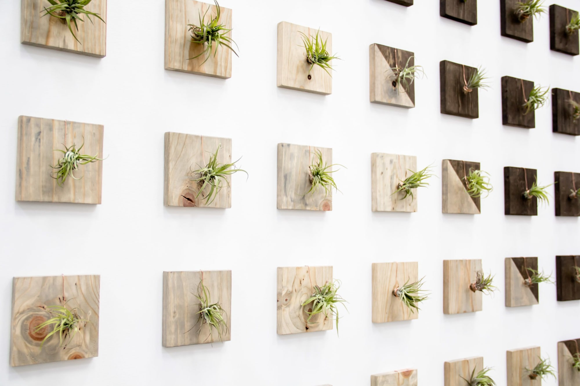 wooden square air plant hangers