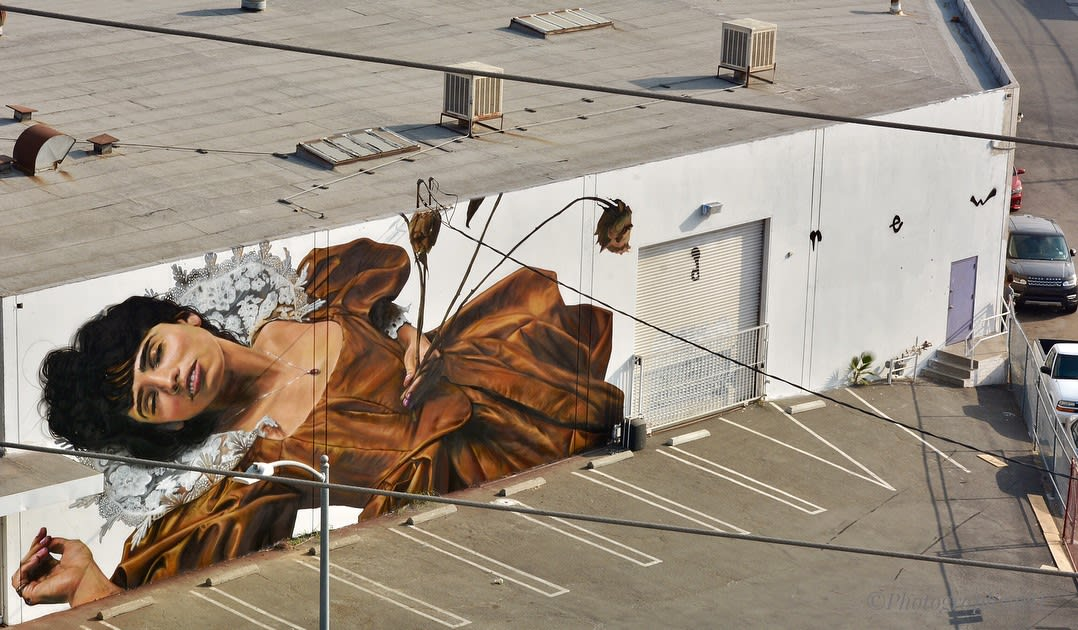 Street Murals by Drew Merritt seen at South Hewitt Street, Los Angeles - Resting in Pieces