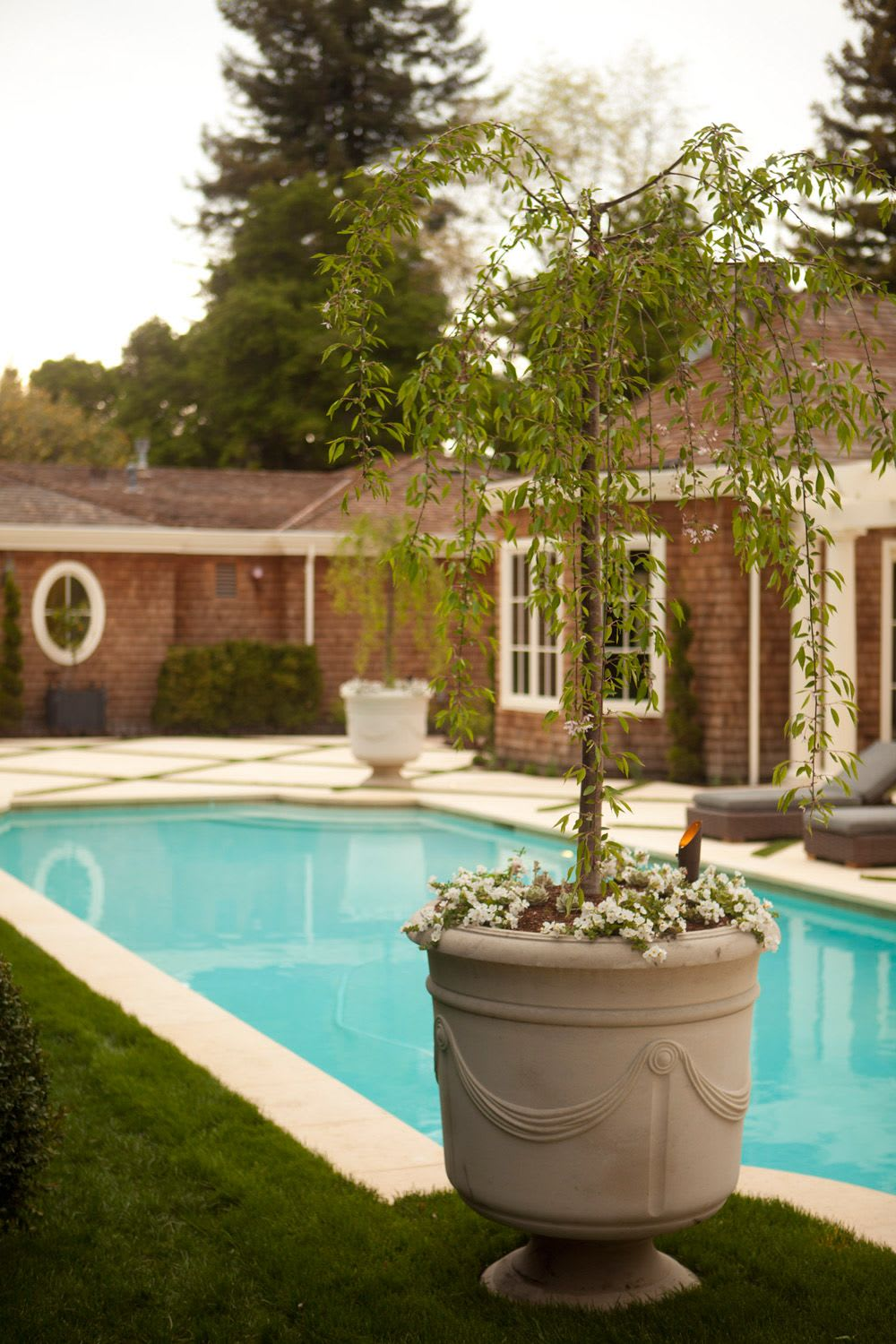 Plants & Landscape by Zeterre Landscape Architecture seen at Private Residence, Atherton - Atherton's Selby Lane