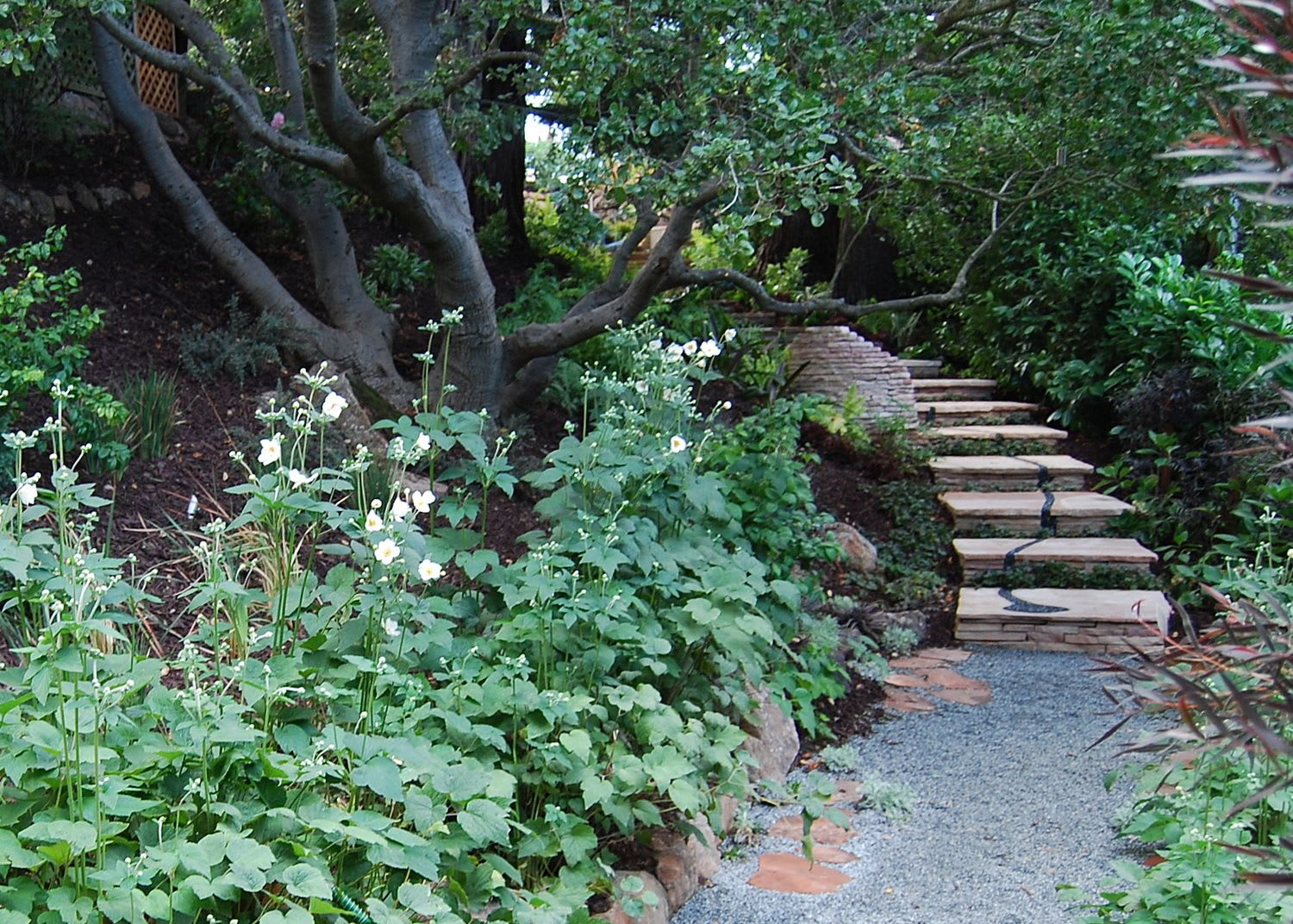Plants & Landscape by Zeterre Landscape Architecture seen at Private Residence, Los Gatos - Cypress Ridge - Los Gatos