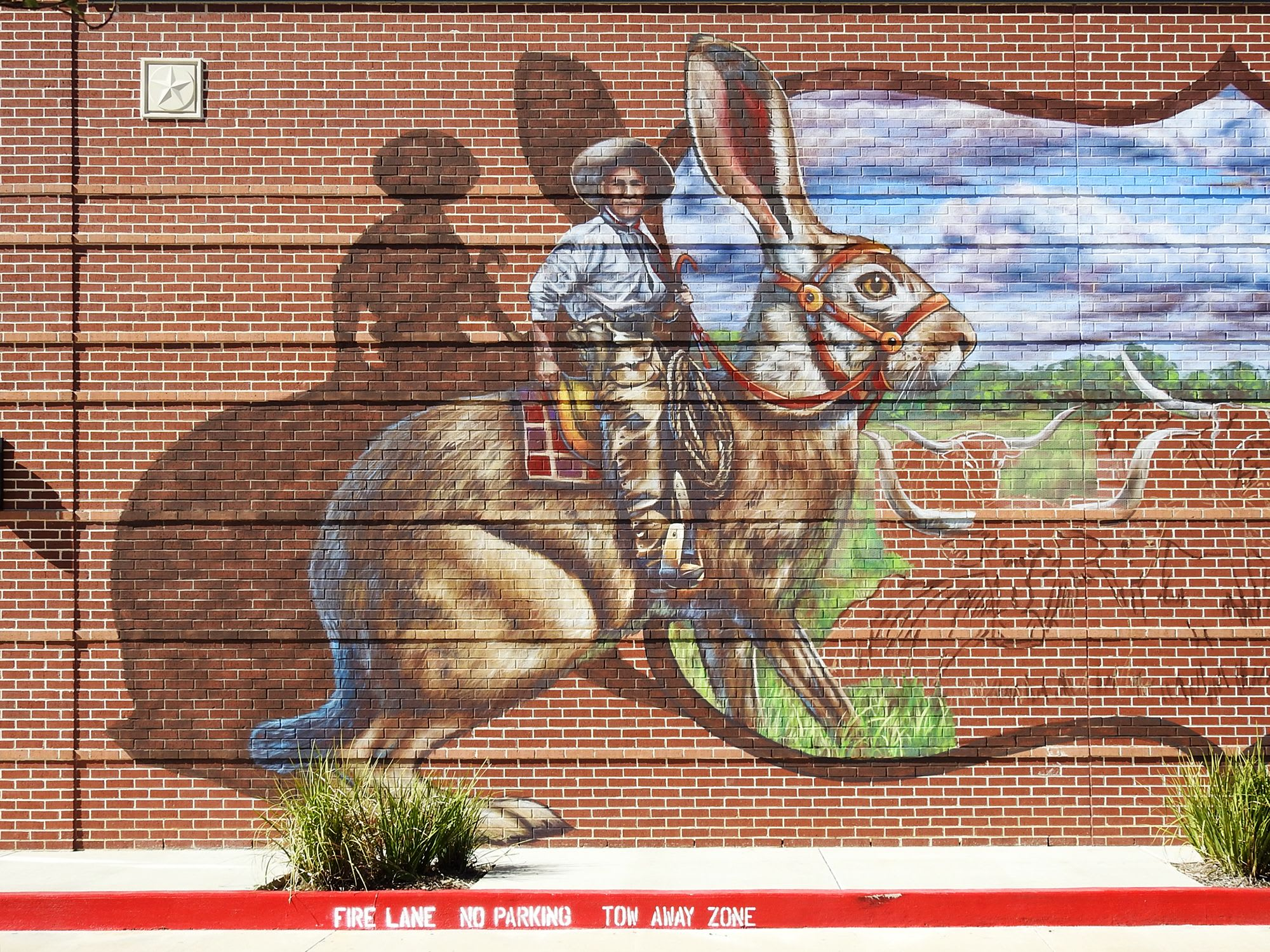 Street Murals by Anat Ronen seen at Lakeland Village Center, Cypress - Lakeland Cattle