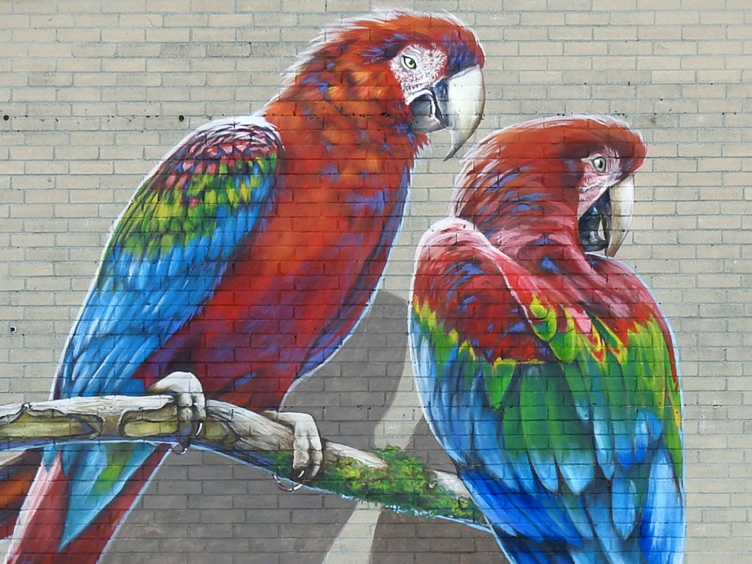 Street Murals by Anat Ronen seen at Spring Branch - The Zocalo murals