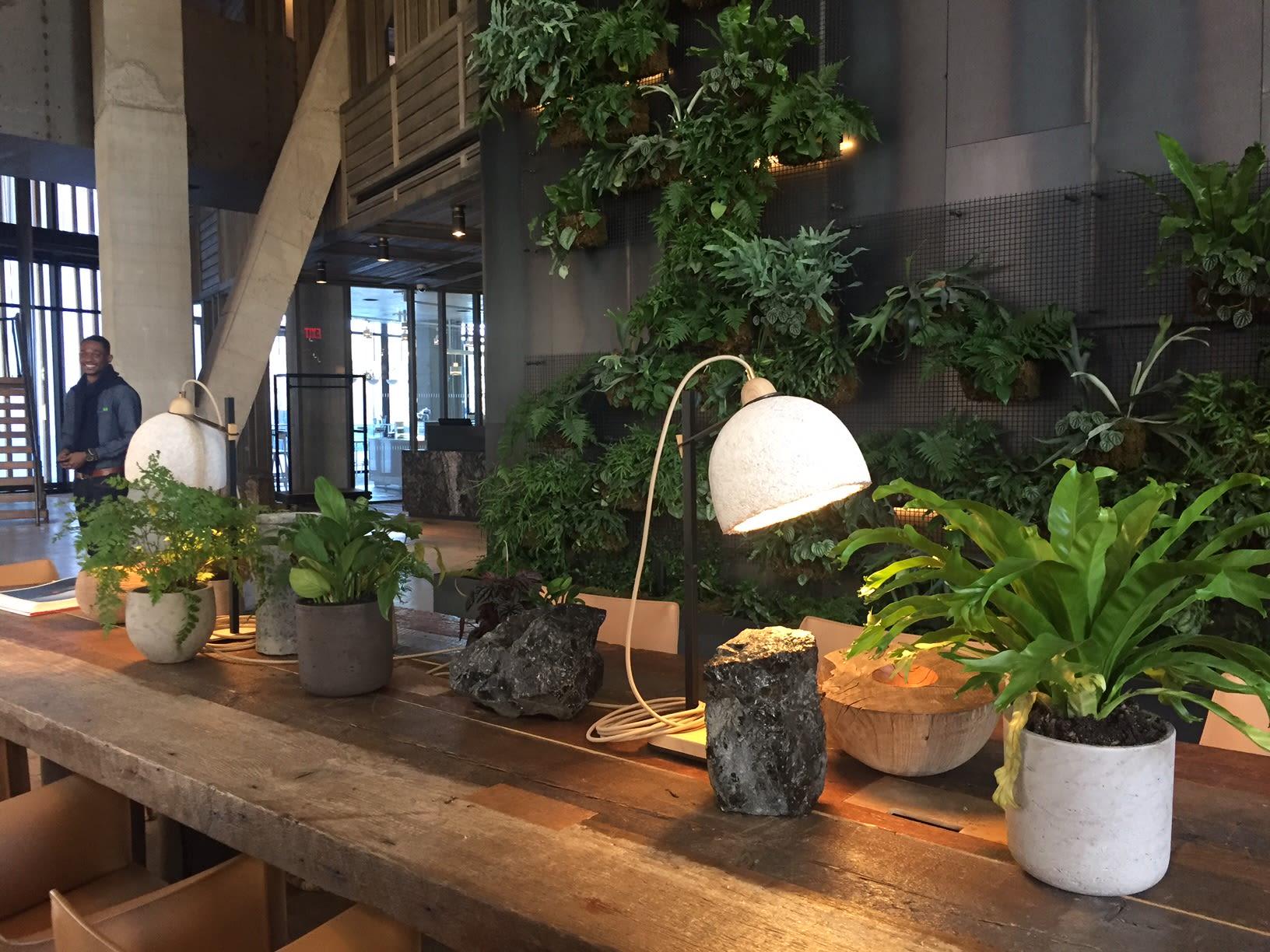 Lamps by Danielle Trofe Design seen at 1 Hotel Brooklyn Bridge, Brooklyn - MushLume Cup Light Table Lamp