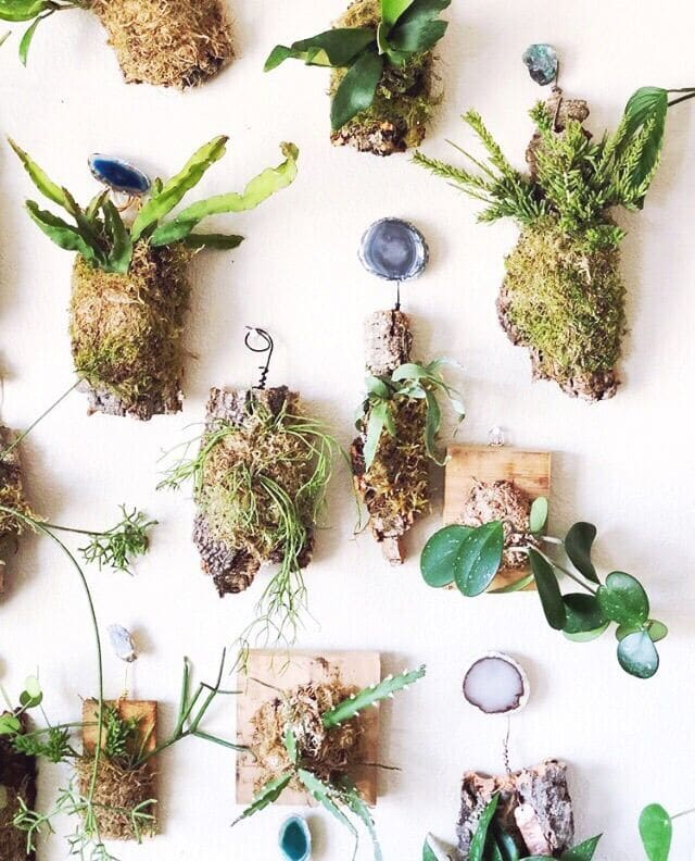 Live wall plant hangers details