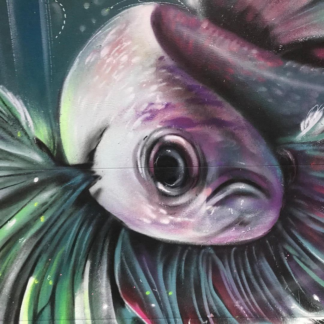 Street Murals by Max Ehrman (Eon75) seen at Cypress Street & 24th Street, San Francisco - Fish Mural