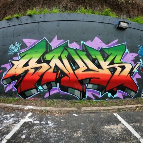 Street Murals by Snuk One seen at Austin, Austin - Graffiti Art