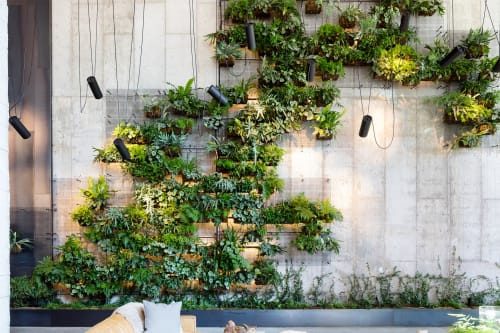 Plants & Flowers by Harrison Green seen at 1 Hotel Brooklyn Bridge, Brooklyn - Living Wall