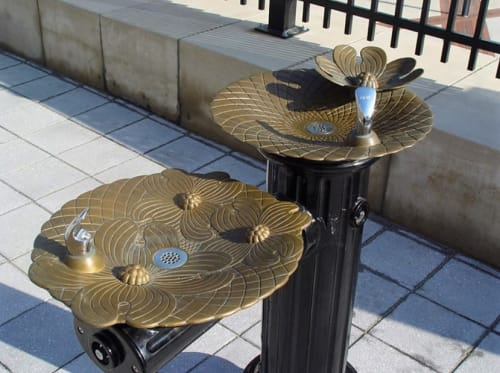 Sculptures by Nancy Blum seen at Charlotte Area Transit System, Charlotte - Dogwood Basins