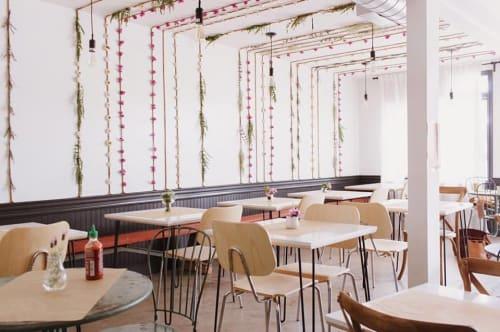 Explore Amara Kitchen Design and Art