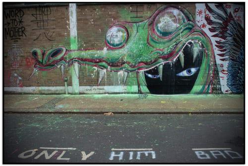 Himbad - Street Murals and Murals