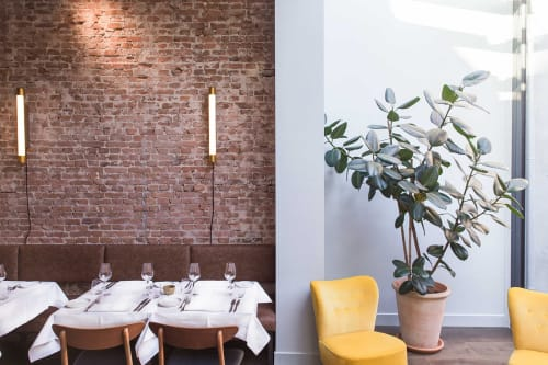 Lamps by Blom & Blom at Roebling's, Amsterdam - Golden Woodpecker