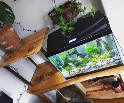 Furniture by Hurricane Woodwork seen at Private Residence, Philadelphia - Fish Tank Stand/Plant Stand