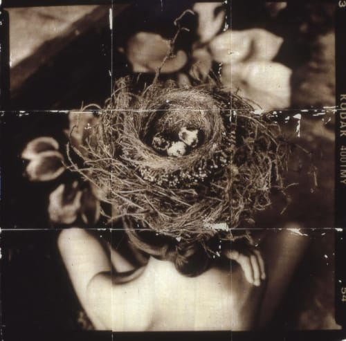 Photography by Pam Moxley Mixed Media seen at Private Residence, Atlanta - Deep Breath