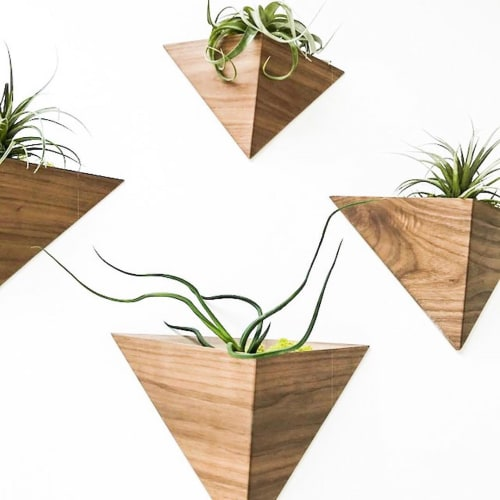 Vases & Vessels by Fernweh Woodworking at Google HQ, Mountain View, CA, Mountain View - Wall-Mounted Walnut Planters