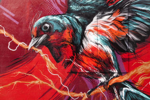 Street Murals by David 'MEGGS' Hooke seen at 1 Rowland St, North Beach, San Francisco - The  Swallow aka Save Our Souls
