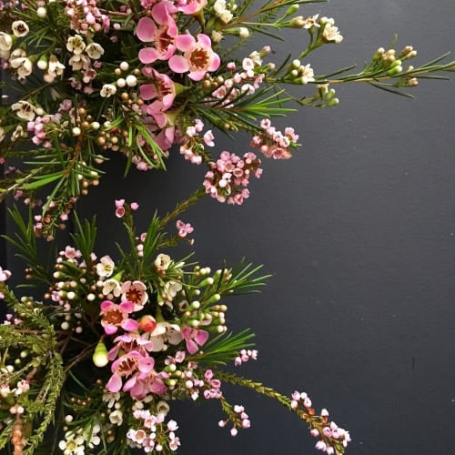 Floral Arrangements by Fox Fodder Farm seen at L'estudio, New York - Floral Arrangement