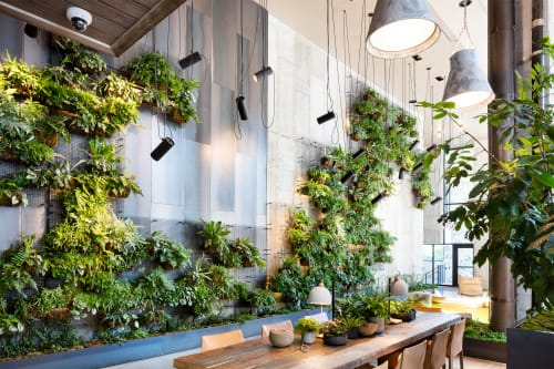 Plants & Flowers by Harrison Green at 1 Hotel Brooklyn Bridge, Brooklyn - Living Wall