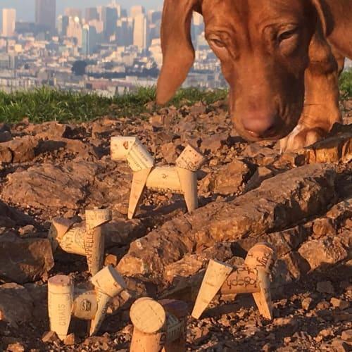 Sculptures by Miles Epstein seen at Miles Epstein Studio, San Francisco - Cork Dogs