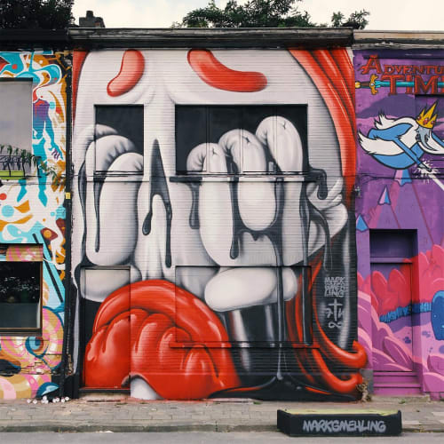 Street Murals by Mark Gmehling seen at Antwerp, Antwerp - The Crying House