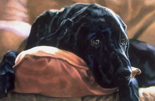 Paintings by Karen Frey seen at The American Kennel Club Museum of the Dog - St Louis MO, St. Louis - Lewis - One Half of Whole