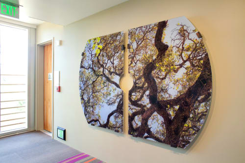 Paintings by Stephen Galloway seen at h2hotel, Healdsburg - Canopy Dreams