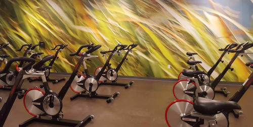 Photography by Rica Belna at NorthBay HealthSpring Fitness, Vacaville - Large-Format Grasses for Group Cycle