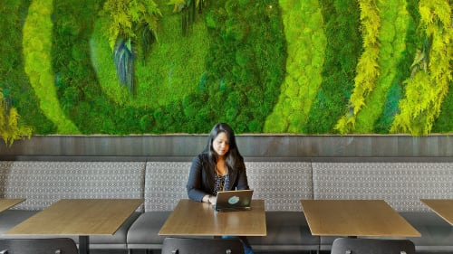 Plants & Flowers by Artisan Moss (Erin Kinsey) seen at LinkedIn - San Francisco, San Francisco - Botanical Green Wall Art