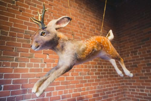 Sculptures by Emily Jan seen at Hopscotch Whisky Bar, Saint John - Jackalope