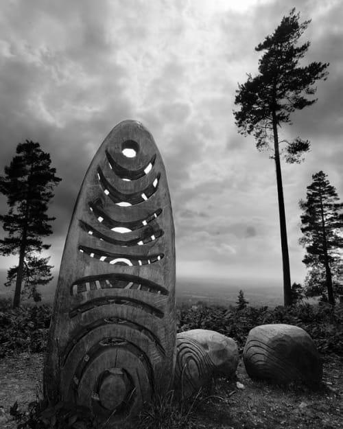 Public Sculptures by Walter Bailey Sculpture seen at Leith Hill, Dorking - Sculpture