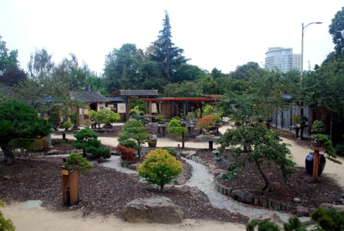Explore The Gardens At Lake Merritt Design And Art Wescover
