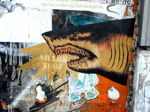Sharktoof - Street Murals and Public Art