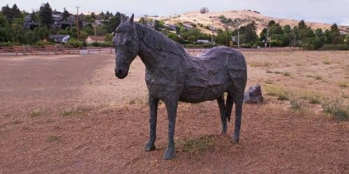 Public Sculptures by Albert Guibara seen at Tiburon Blvd, Tiburon, Tiburon - Blackie's Pasture