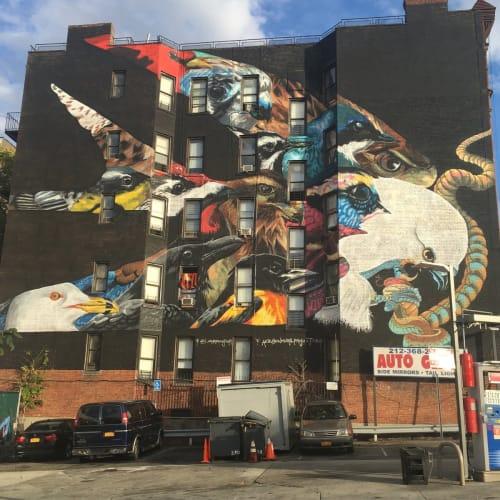 Street Murals by Layqa Nuna Yawar seen at 575 West 155th Street, New York - A Depiction of Urgency