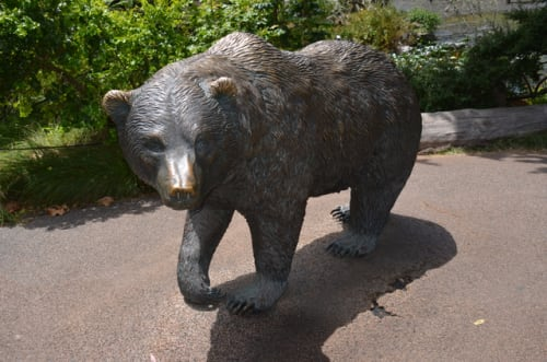 Public Sculptures by Scientific Art Studio seen at San Francisco Zoo, San Francisco - California Grizzly
