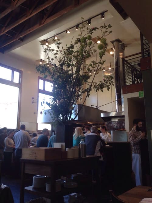 Floral Arrangements by The Petaler at Nopa, San Francisco - Floral Arrangements