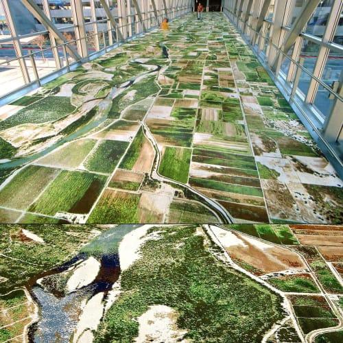 Art & Wall Decor by Seyed Alavi seen at Sacramento International Airport, CA, Sacramento - Flying Carpet