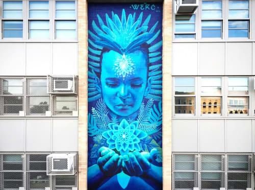 Street Murals by Jari WERC Alvarez seen at Brooklyn New York, Brooklyn - Nature Within