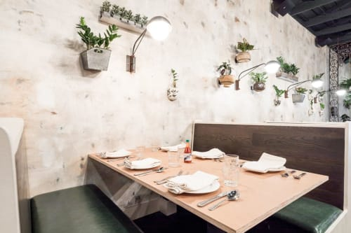 Wall Treatments by Caroline Lizarraga seen at Alba Ray's, San Francisco - Custom Wall Coverings