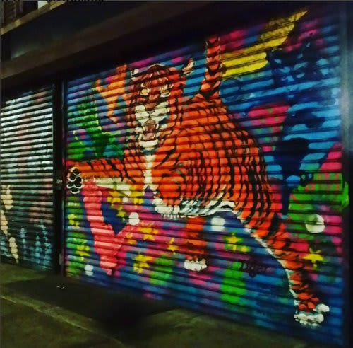 Street Murals by Ashli Sisk seen at Lower East Side, New York - 100 Gates Project and Meow Parlor