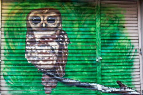 Street Murals by Paul Nassar seen at 3841 Broadway, New York - Spotted Owl