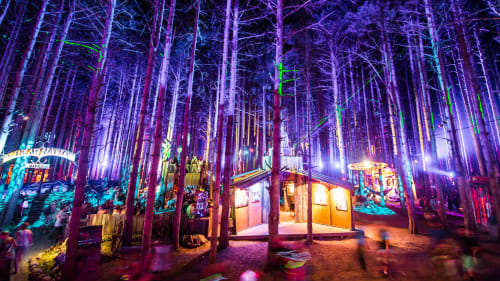 Electric Forest, Urban Canvases, Interior Design