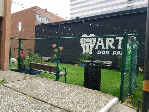Hart's Dog Park, Urban Canvases, Interior Design
