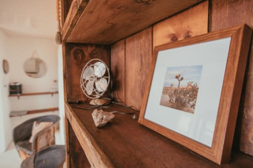 Photography by Wilder California at The Joshua Tree House, Joshua Tree - Framed Cactus Print