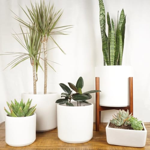 Vases & Vessels by Peach & Pebble seen at Private Residence, Long Beach - White Ceramic Planter