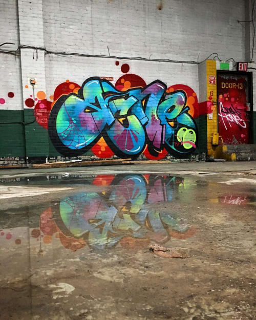 Street Murals by RIME MSK seen at Brooklyn New York, Brooklyn - Acne Graffiti