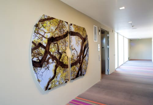 Paintings by Stephen Galloway seen at h2hotel, Healdsburg - Canopy Dreams